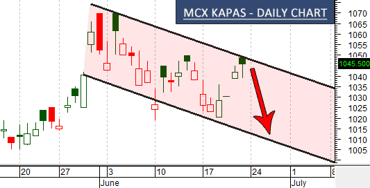mcx-kapas-chart